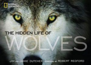 Hidden Life of Wolves