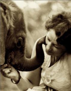 Love, Life, and Elephants