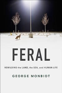 Feral-cover-image_larger